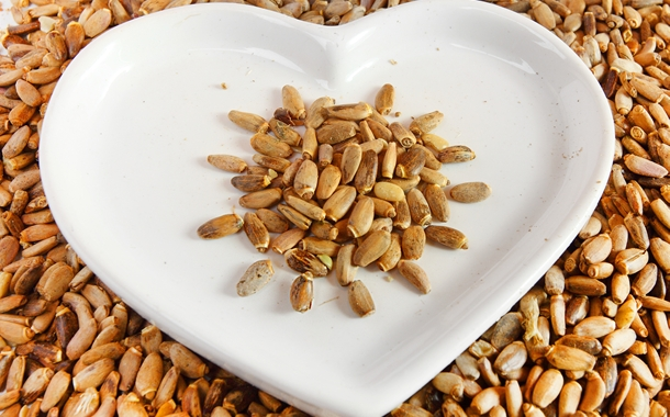 Nutrición Holística: el futuro de la alimentación
