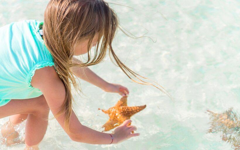 Cuentos para la reflexión :: Estrellas de mar