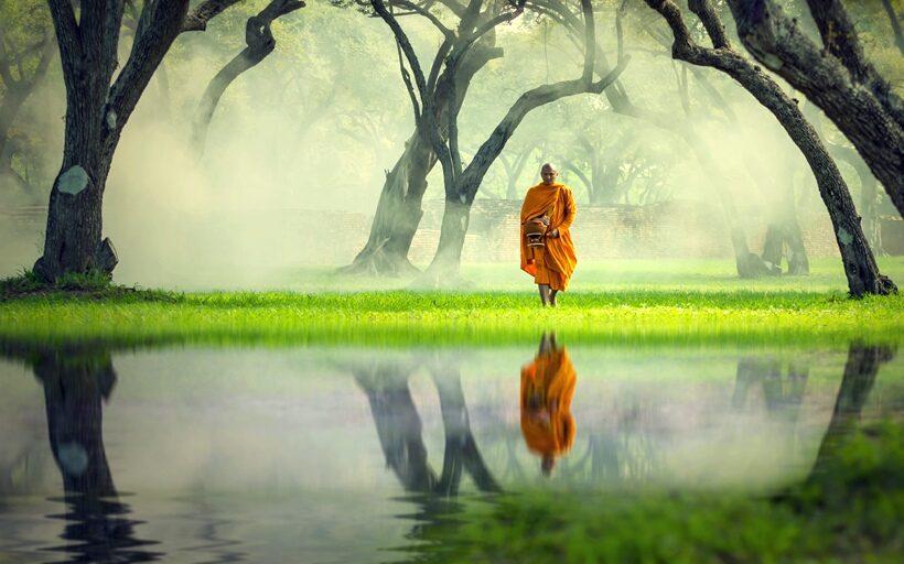 Cuentos para la reflexión :: El monje y el escorpión